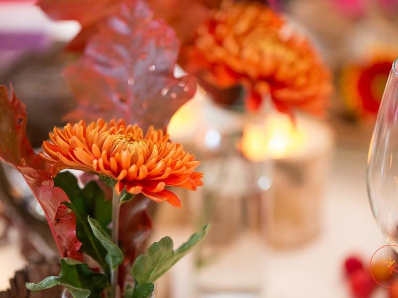 Oranje bloem. Foto Karin Keesmaat