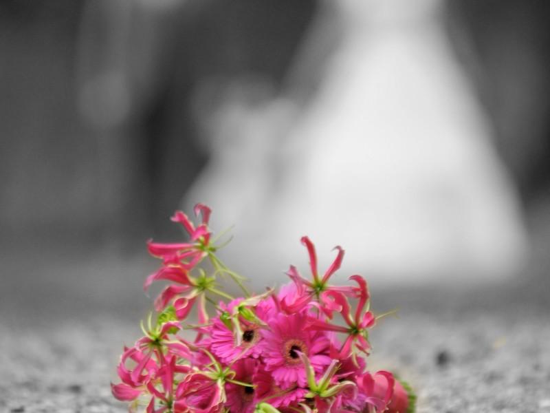 Roze bloemen op de grond met daarachter wazig het bruidspaar. Foto, behalve de bloemen, is zwart-wit. Foto Ton Otten
