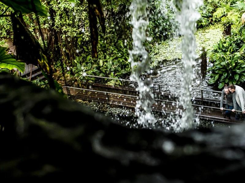 Koppel op een brug in de jungle. Doorkijkje via een waterval. Foto Karin Keesmaat