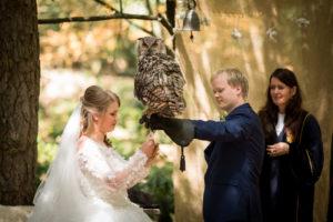 Bruidspaar met uil die de ringen heeft aangevlogen